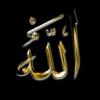 Nour Fatima